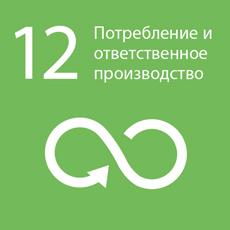goal_12-ru